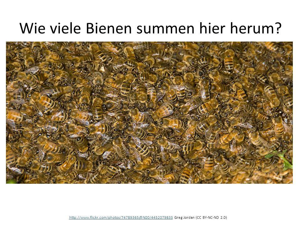 Wie viele Bienen summen hier herum? http://www.flickr.com/photos/74789365@N00/4452079835http://www.flickr.com/photos/74789365@N00/4452079835 Greg Jord
