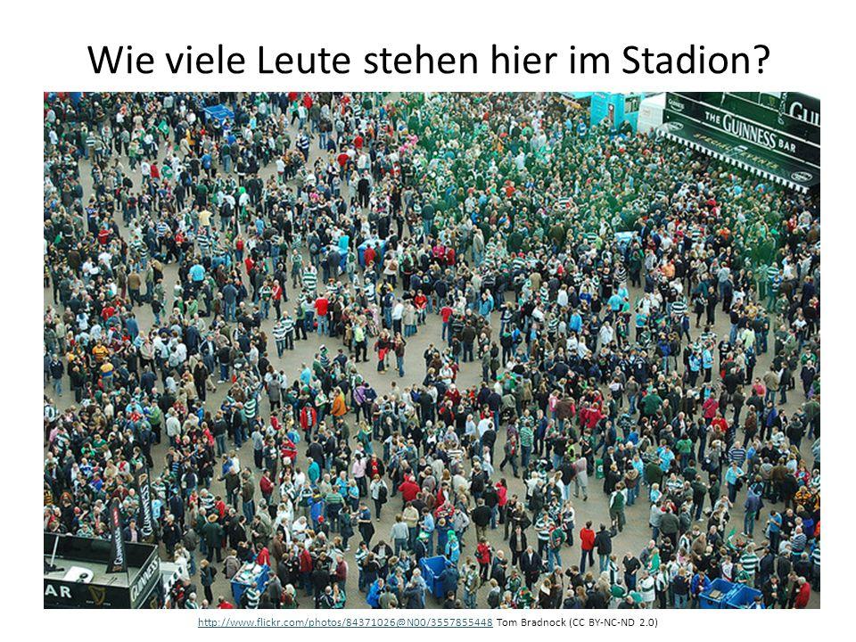 Wie viele Leute stehen hier im Stadion? http://www.flickr.com/photos/84371026@N00/3557855448http://www.flickr.com/photos/84371026@N00/3557855448 Tom B