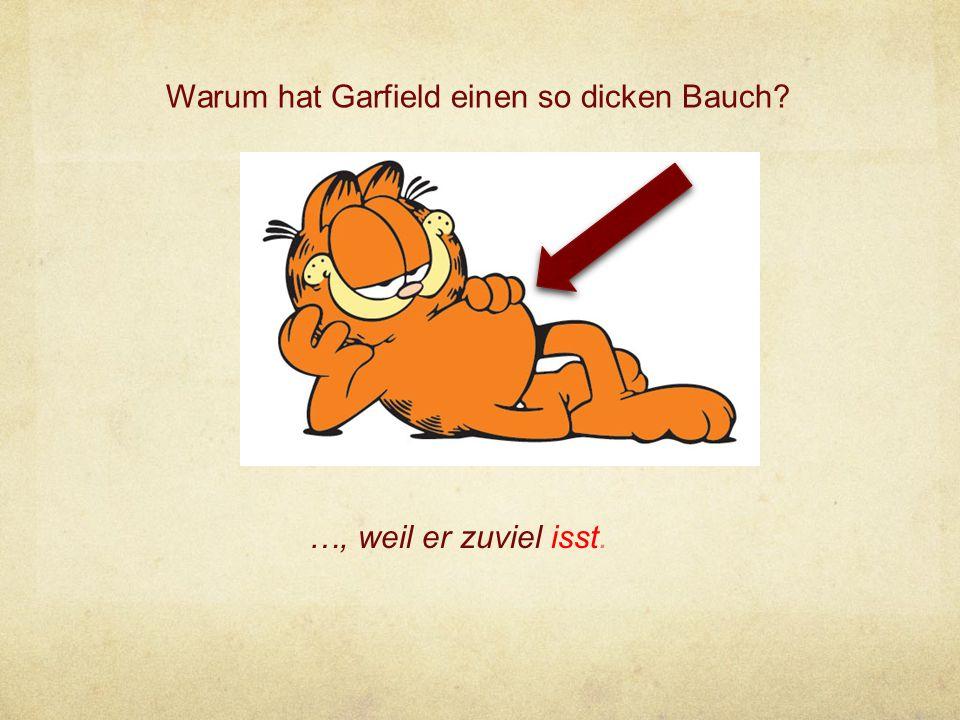 Warum hat Garfield einen so dicken Bauch? …, weil er zuviel isst.