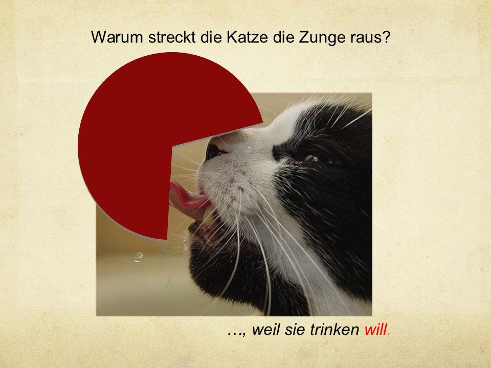 Warum streckt die Katze die Zunge raus? …, weil sie trinken will.