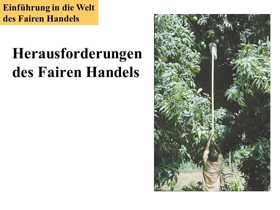 Herausforderungen des Fairen Handels Einführung in die Welt des Fairen Handels