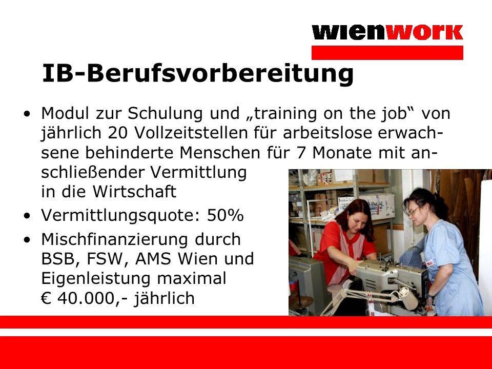 """IB-Berufsvorbereitung Modul zur Schulung und """"training on the job"""" von jährlich 20 Vollzeitstellen für arbeitslose erwach- sene behinderte Menschen fü"""