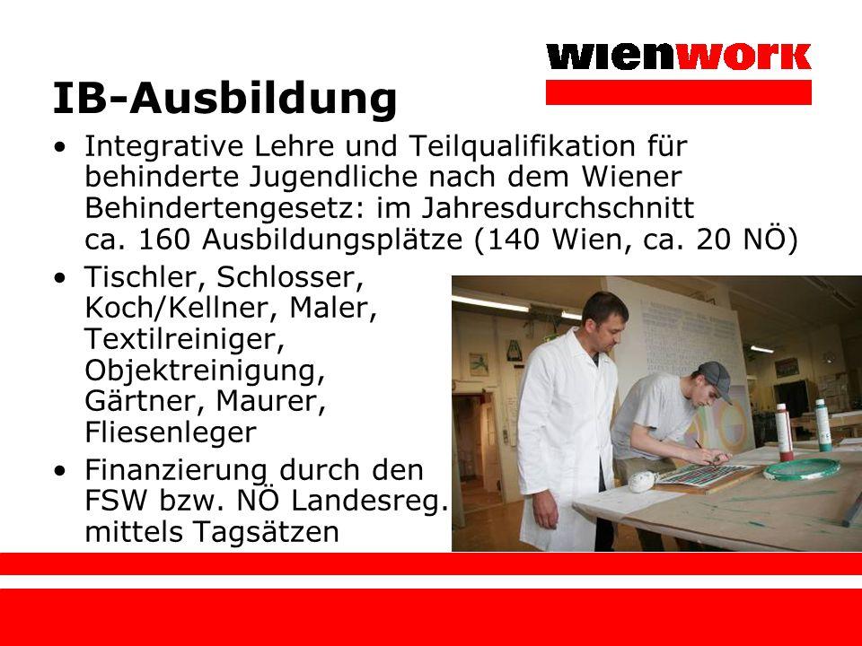IB-Ausbildung Integrative Lehre und Teilqualifikation für behinderte Jugendliche nach dem Wiener Behindertengesetz: im Jahresdurchschnitt ca. 160 Ausb