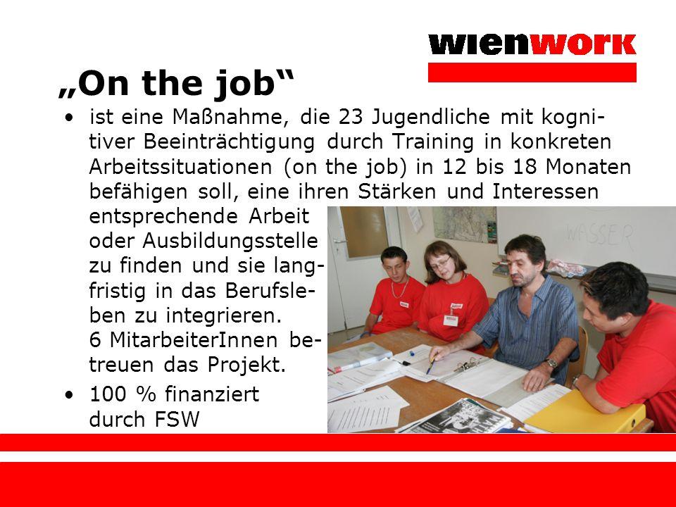 """""""On the job"""" ist eine Maßnahme, die 23 Jugendliche mit kogni- tiver Beeinträchtigung durch Training in konkreten Arbeitssituationen (on the job) in 12"""