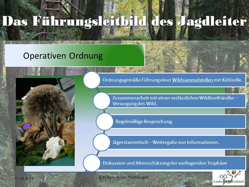BJM Bgm. Anton Helmberger 38 07.02.2014 Operativen Ordnung Ordnungsgemäße Führung einer Wildsammelstellen mit Kühlzelle. Zusammenarbeit mit einen verl