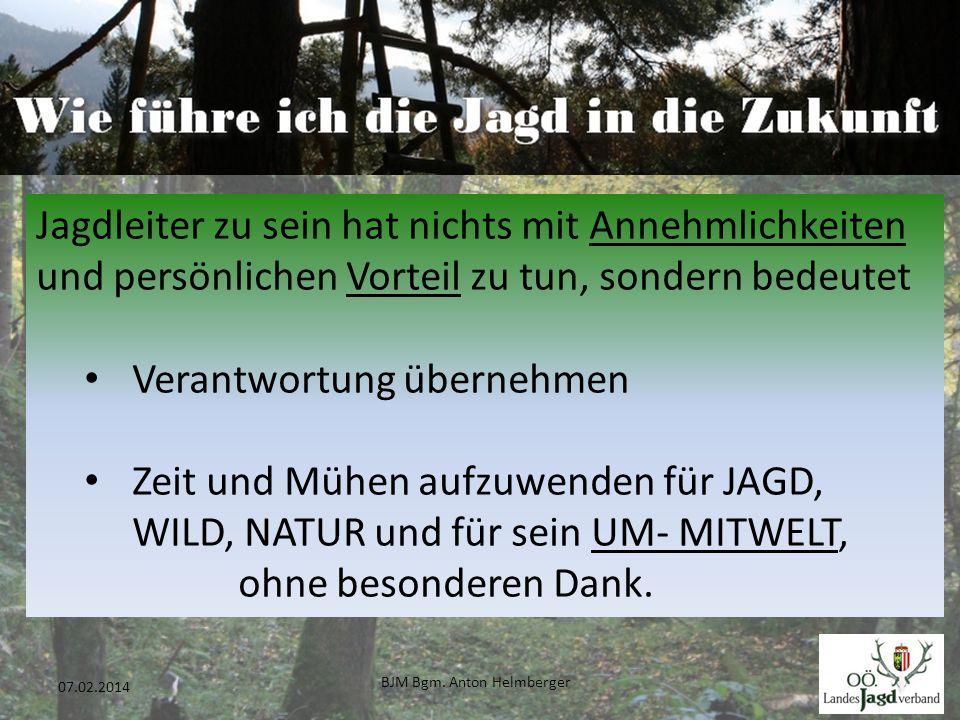BJM Bgm. Anton Helmberger 6 07.02.2014 Jagdleiter zu sein hat nichts mit Annehmlichkeiten und persönlichen Vorteil zu tun, sondern bedeutet Verantwort
