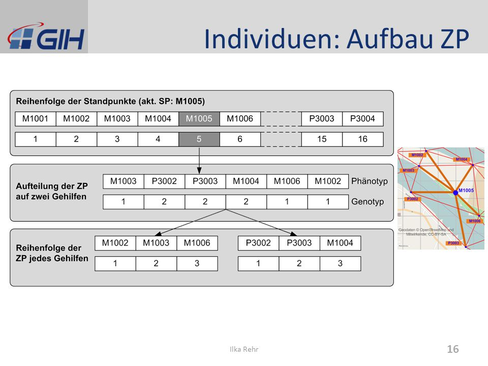 Individuen: Aufbau ZP Ilka Rehr 16