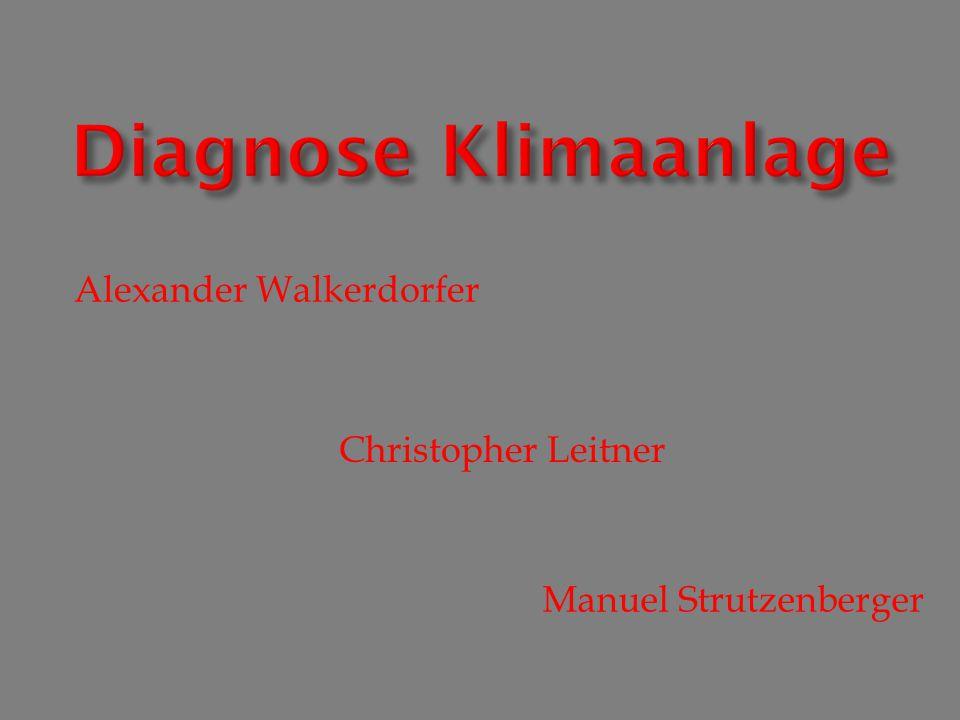 Alexander Walkerdorfer Christopher Leitner Manuel Strutzenberger