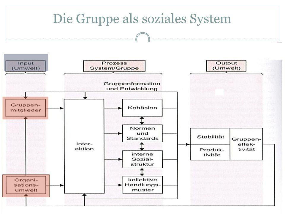 Die Gruppe als soziales System
