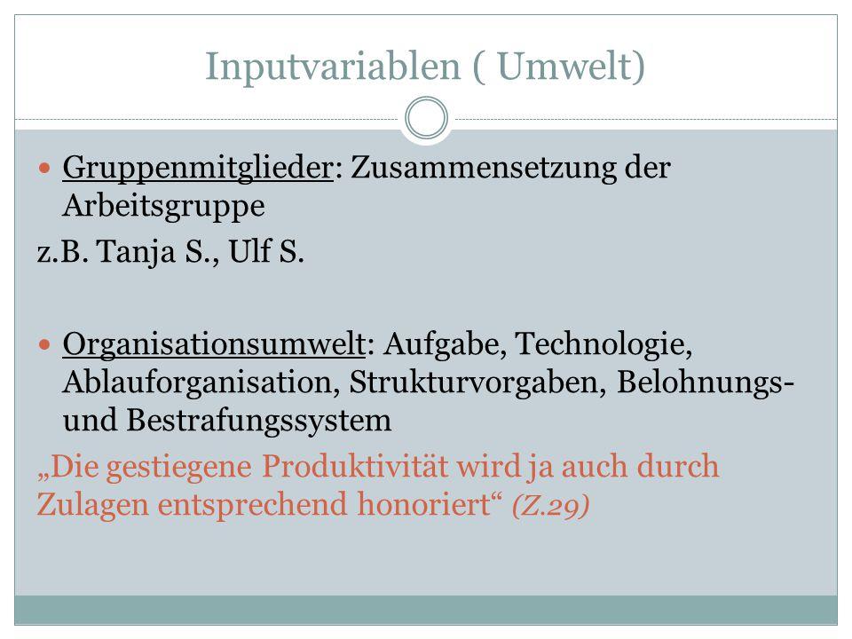 Inputvariablen ( Umwelt) Gruppenmitglieder: Zusammensetzung der Arbeitsgruppe z.B. Tanja S., Ulf S. Organisationsumwelt: Aufgabe, Technologie, Ablaufo