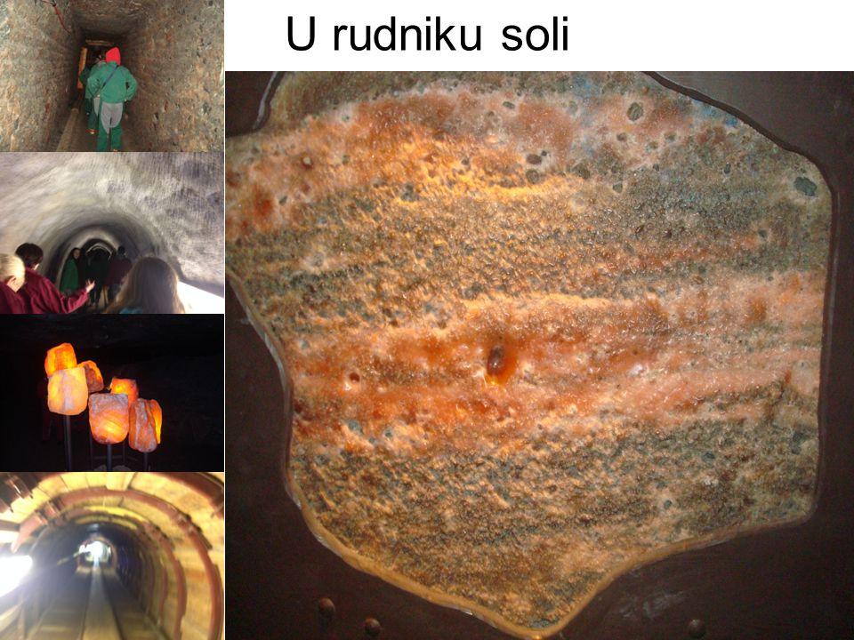 U rudniku soli