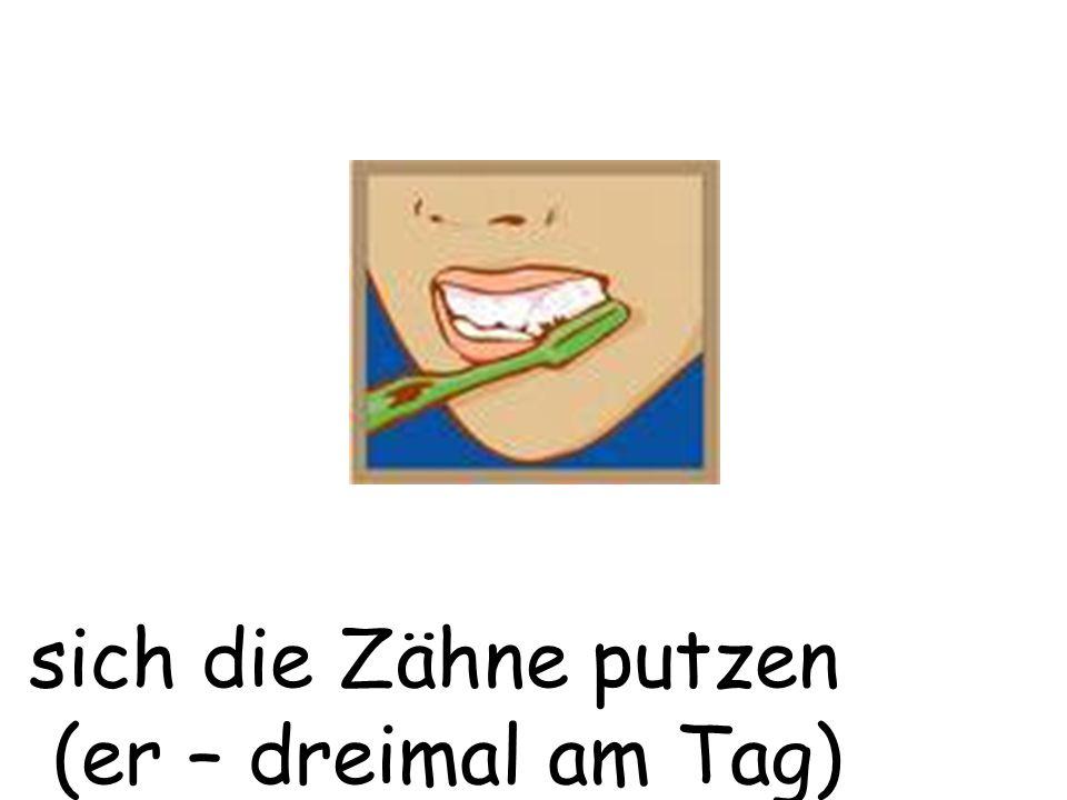 sich die Zähne putzen (er – dreimal am Tag)