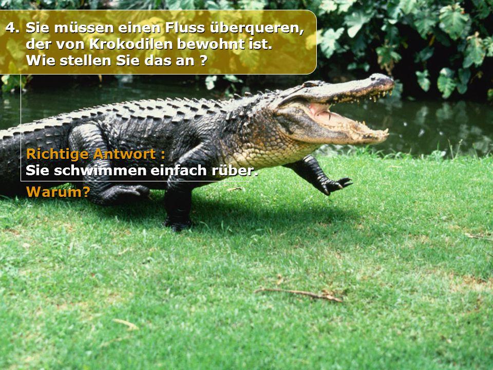 4.Sie müssen einen Fluss überqueren, der von Krokodilen bewohnt ist. Wie stellen Sie das an ? Richtige Antwort : Sie schwimmen einfach rüber. Richtige