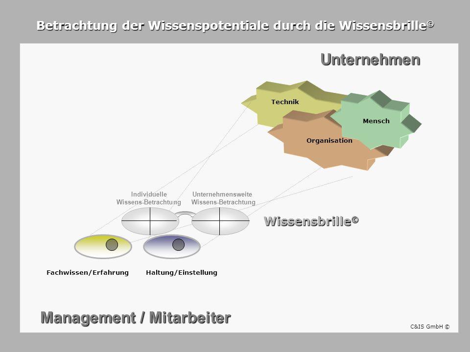 Fachwissen/Erfahrung Unternehmen Haltung/Einstellung Management / Mitarbeiter Betrachtung der Wissenspotentiale durch die Wissensbrille © Technik Orga