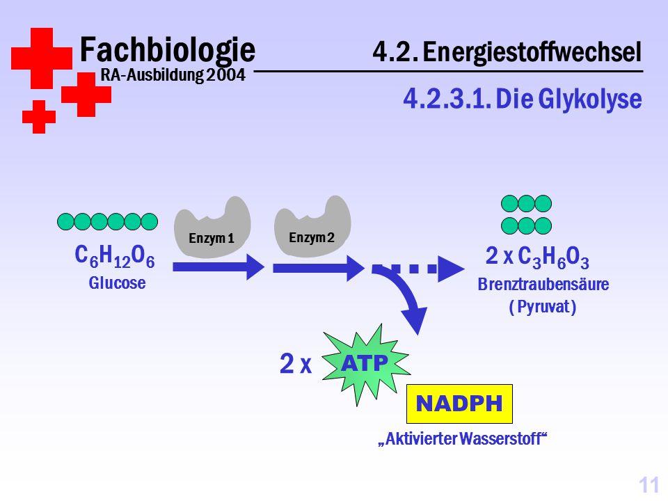 NADPH Fachbiologie 4.2.Energiestoffwechsel RA-Ausbildung 2004 4.2.3.1.