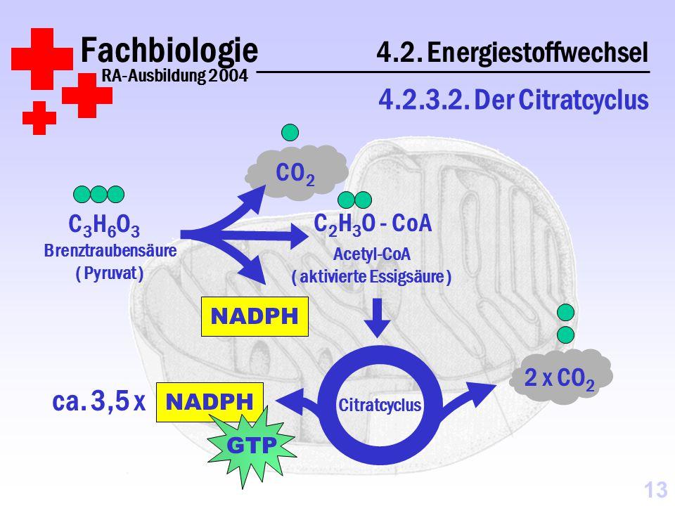 Fachbiologie 4.2.Energiestoffwechsel RA-Ausbildung 2004 4.2.3.2.