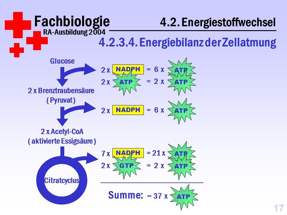 Fachbiologie 4.2.Energiestoffwechsel RA-Ausbildung 2004 4.2.3.4.