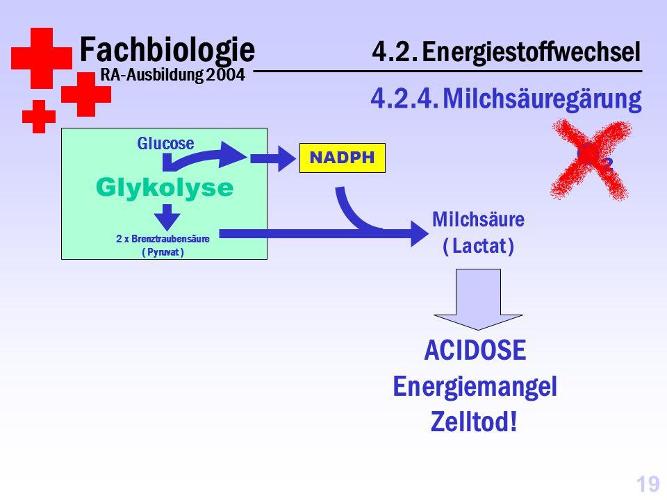Fachbiologie 4.2.Energiestoffwechsel RA-Ausbildung 2004 4.2.4.