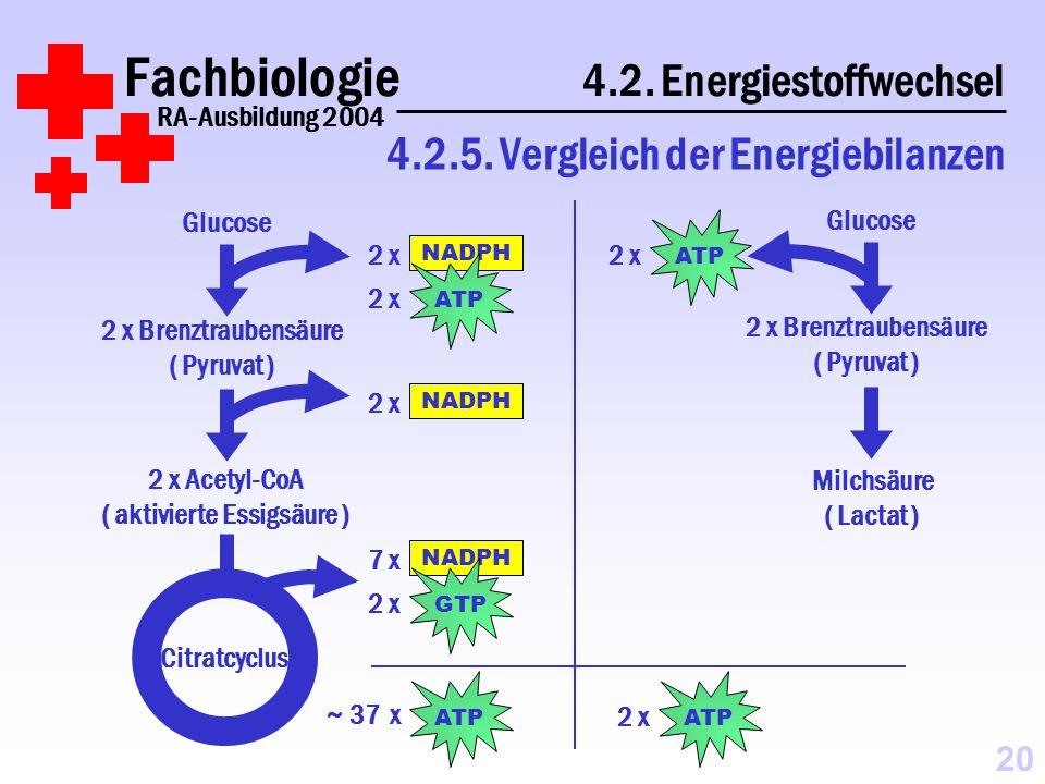 Fachbiologie 4.2.Energiestoffwechsel RA-Ausbildung 2004 4.2.5.