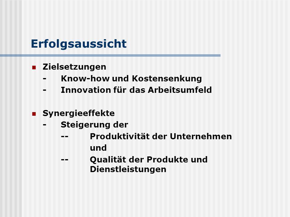 Erfolgsaussicht Zielsetzungen -Know-how und Kostensenkung -Innovation für das Arbeitsumfeld Synergieeffekte -Steigerung der --Produktivität der Untern