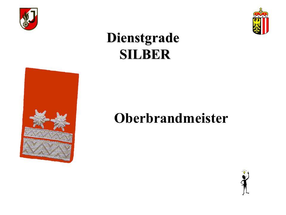 Dienstgrade SILBER Brandmeister