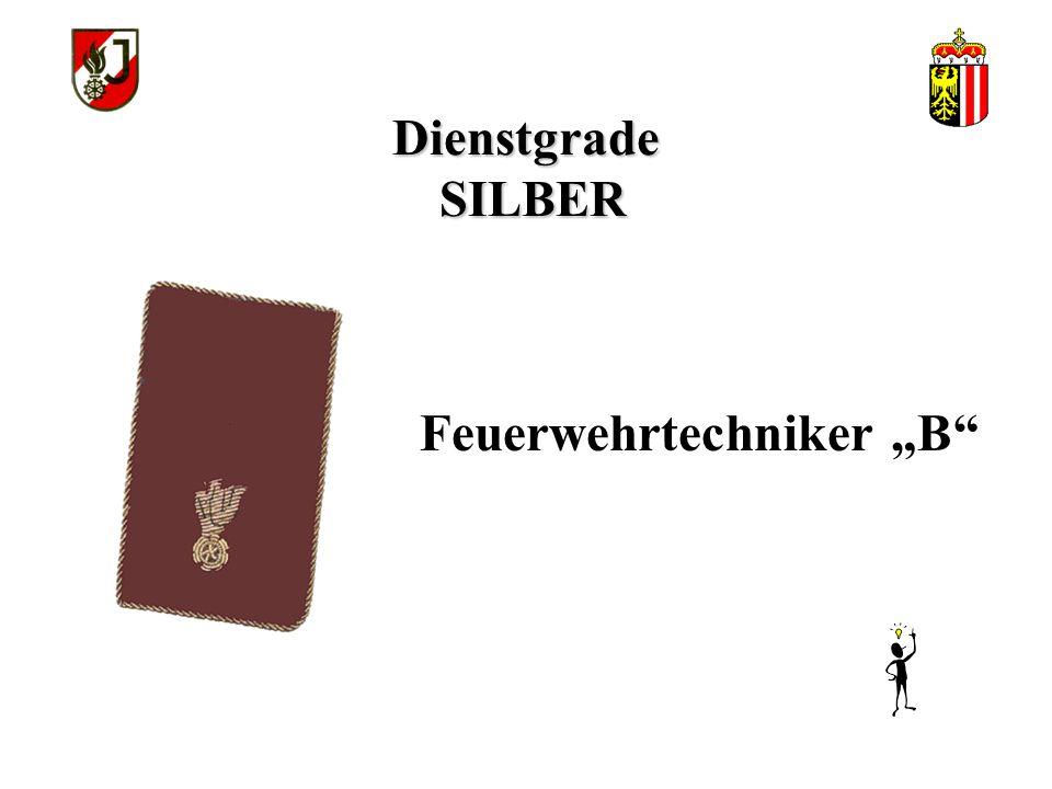 """Dienstgrade SILBER Feuerwehrtechniker """"B"""