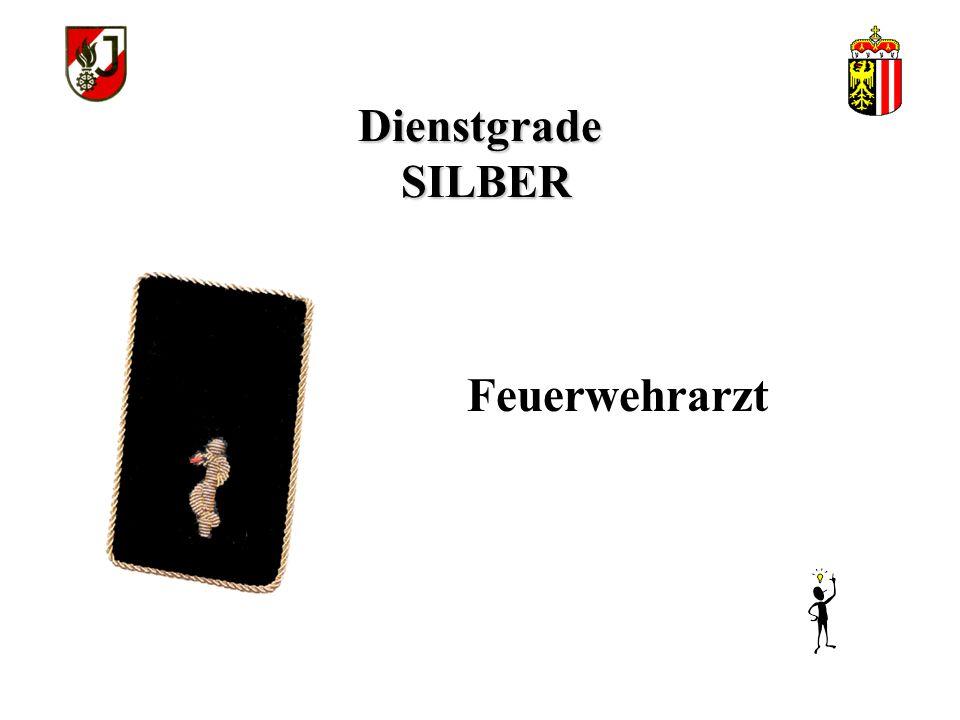 """Dienstgrade SILBER Feuerwehrtechniker """"B"""""""