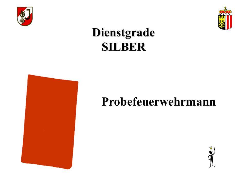 Dienstgrade SILBER Probefeuerwehrmann