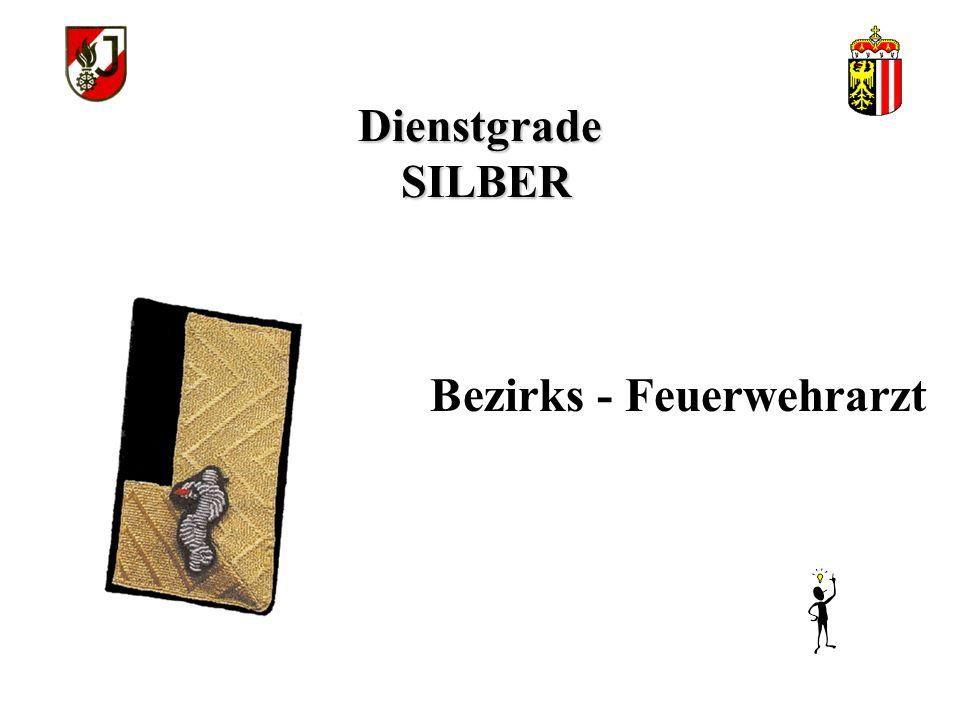 """Dienstgrade SILBER Feuerwehrtechniker """"A"""""""