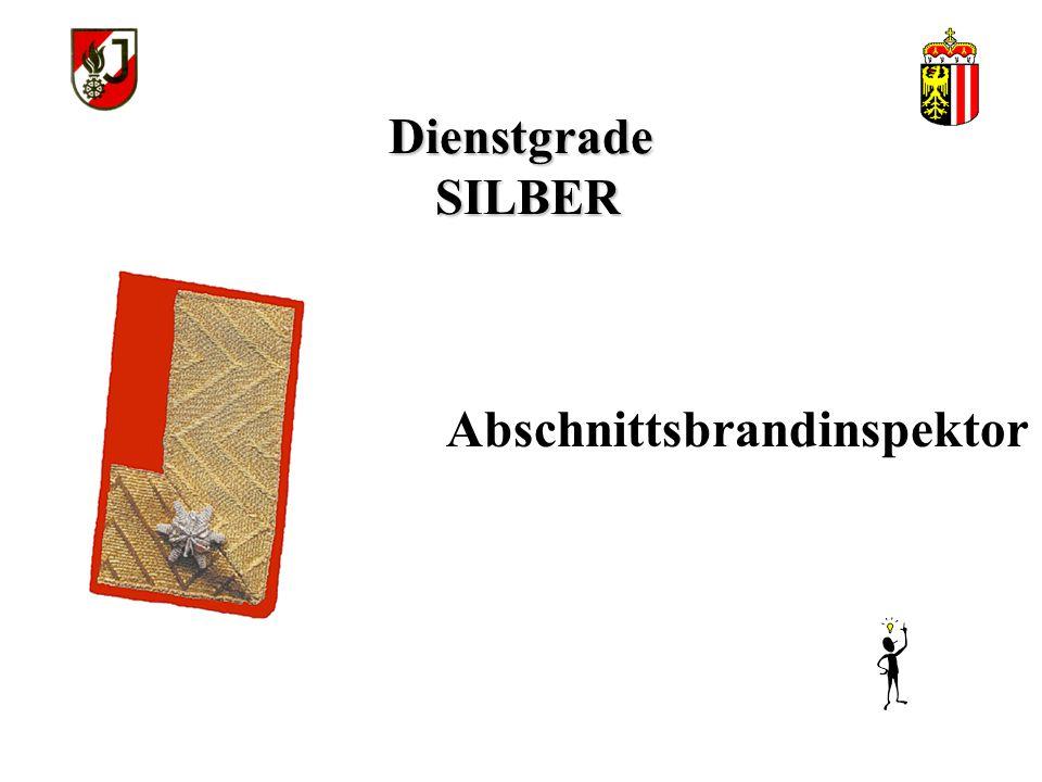 Dienstgrade SILBER Abschnittsbrandinspektor