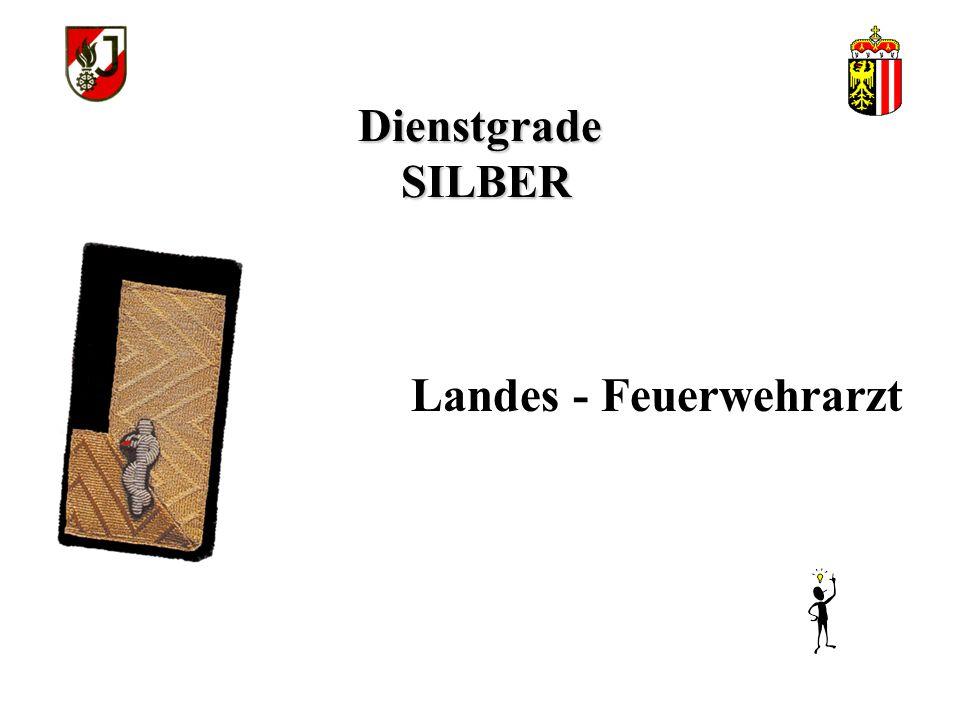 Dienstgrade SILBER Landes - Feuerwehrarzt