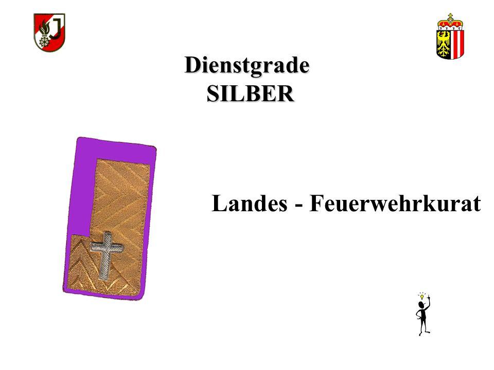 Dienstgrade SILBER Landes - Feuerwehrkurat