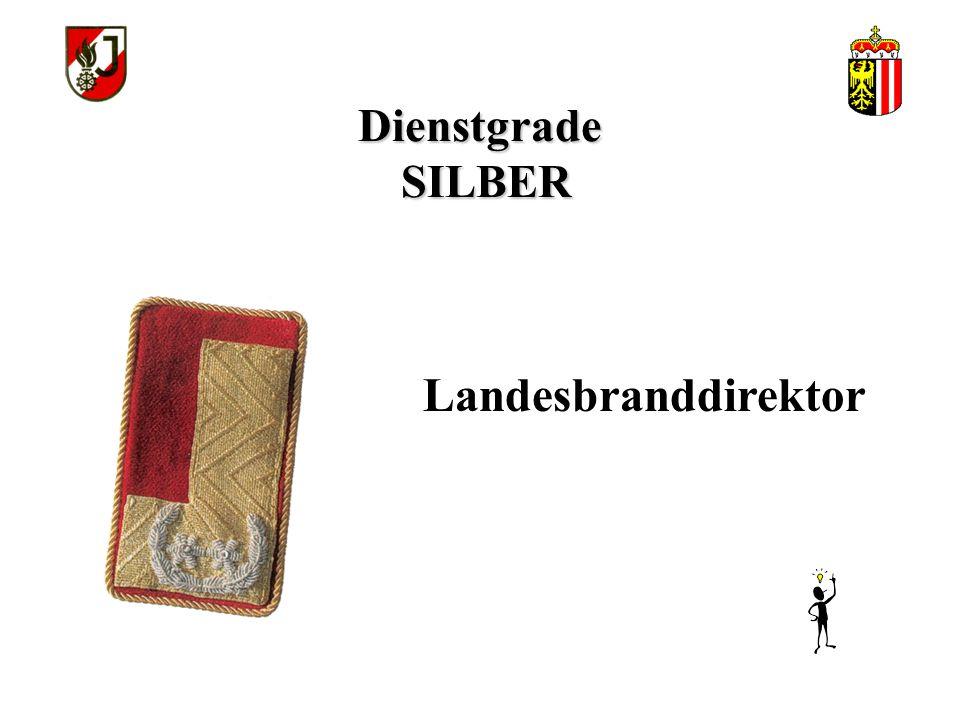 Dienstgrade SILBER Landesbranddirektor