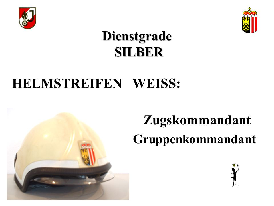 Dienstgrade SILBER Zugskommandant Gruppenkommandant HELMSTREIFEN WEISS: