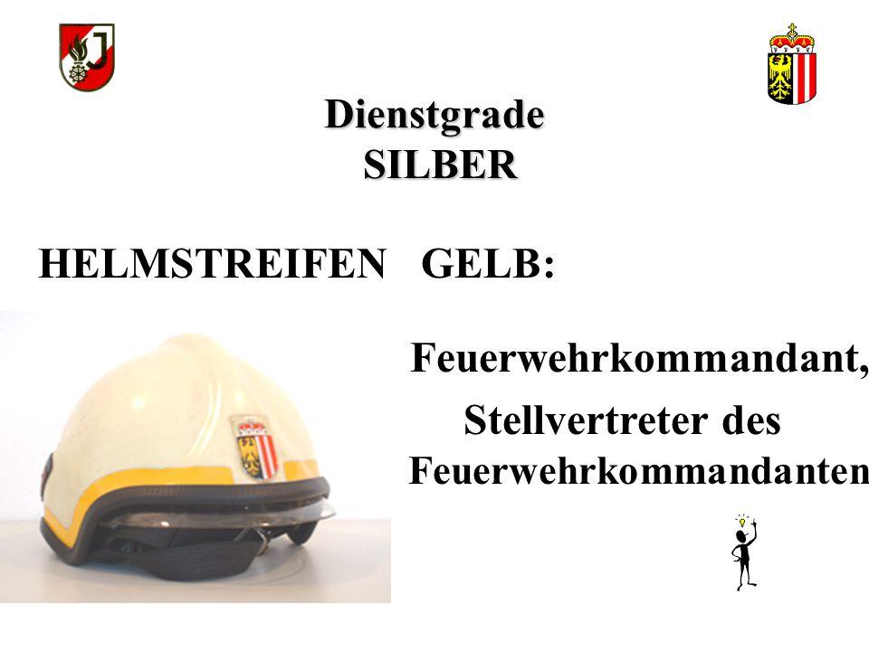 Dienstgrade SILBER Feuerwehrkommandant, Stellvertreter des Feuerwehrkommandanten HELMSTREIFEN GELB: