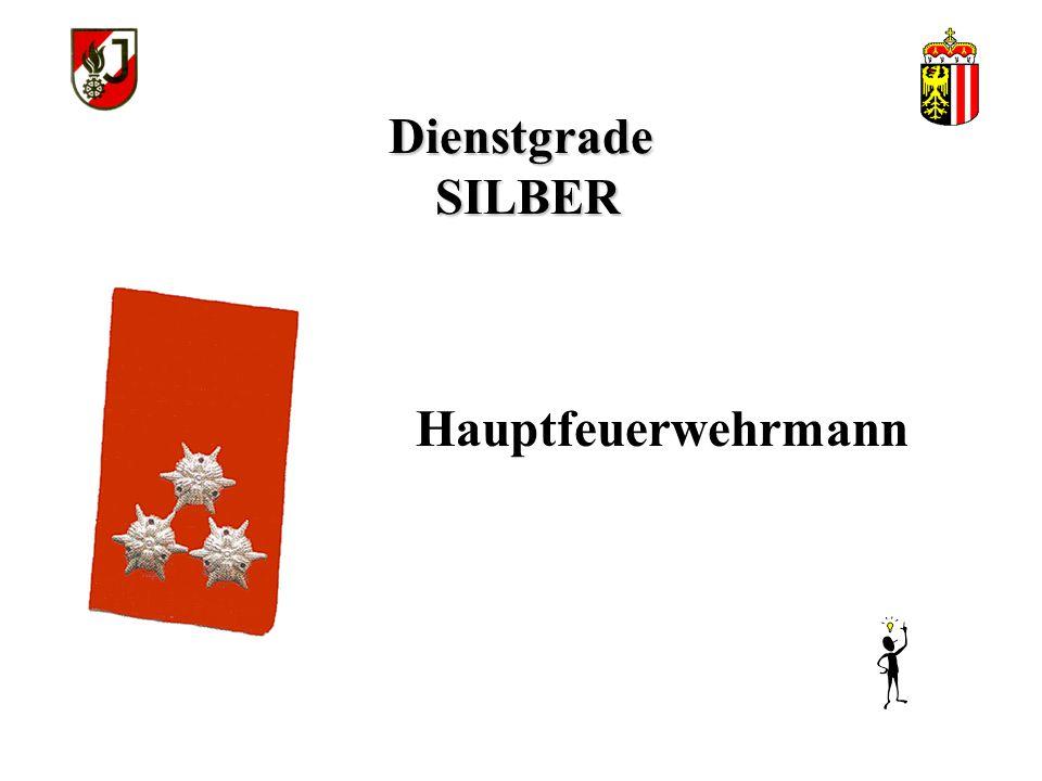 Dienstgrade SILBER Hauptfeuerwehrmann