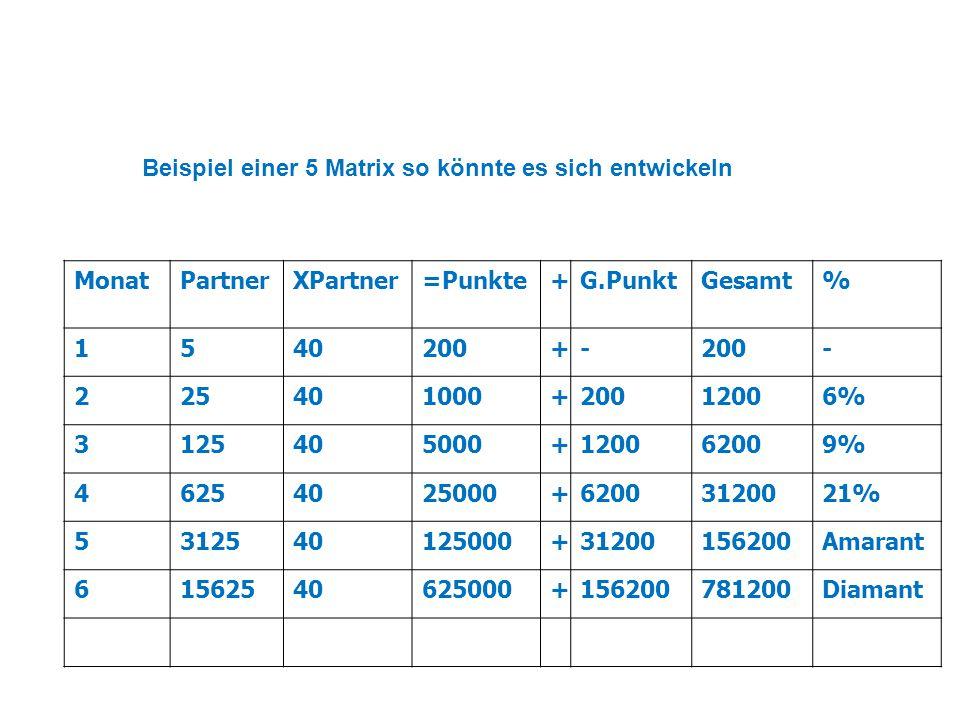 MonatPartnerXPartner=Punkte+G.PunktGesamt% 1540200+- - 225401000+20012006% 3125405000+120062009% 46254025000+62003120021% 5312540125000+31200156200Ama