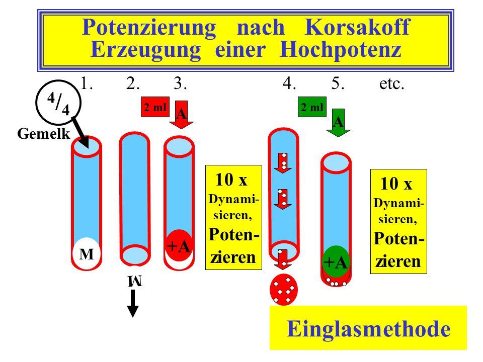 Potenzierung nach Korsakoff Erzeugung einer Hochpotenz 1. 2. 3.4.5.etc. 10 x Dynami- sieren, Poten- zieren 4/44/4 M M 2 ml A +A+A A +A+A M 10 x Dynami