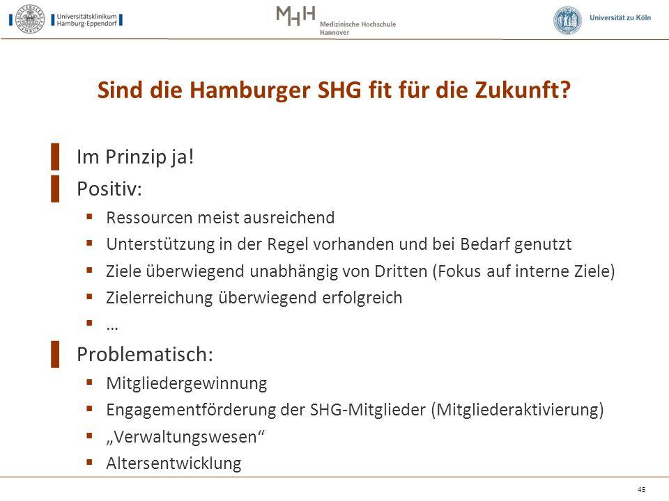 Sind die Hamburger SHG fit für die Zukunft? ▌ Im Prinzip ja! ▌ Positiv:  Ressourcen meist ausreichend  Unterstützung in der Regel vorhanden und bei