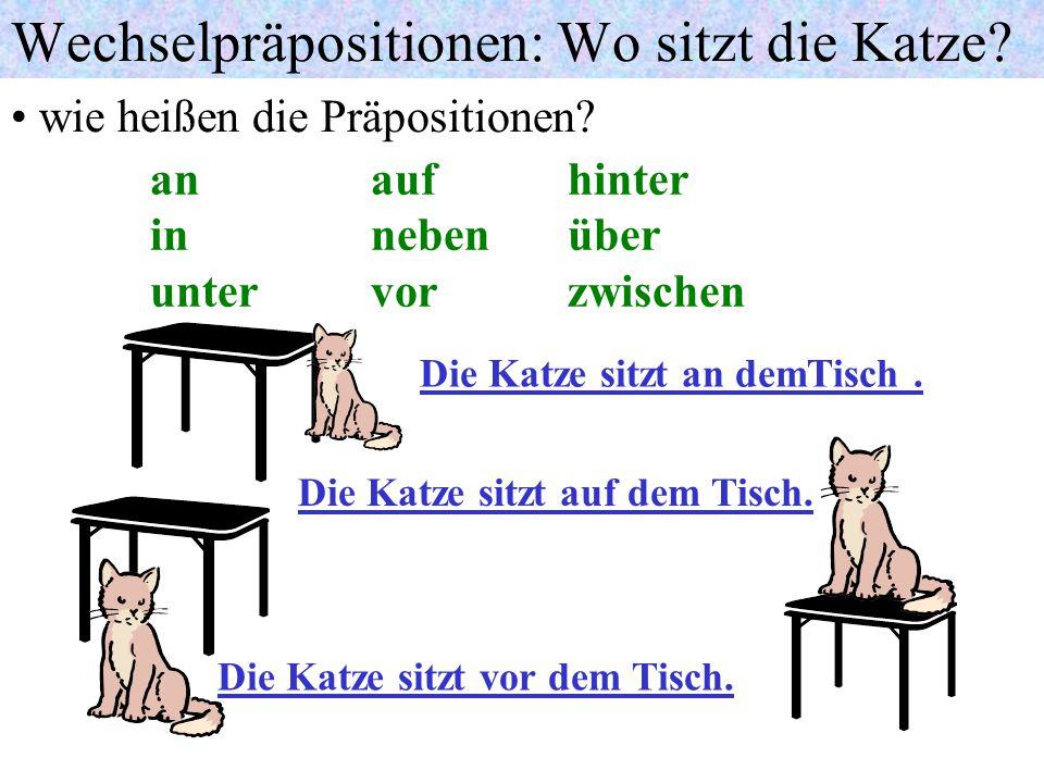 Wechselpräpositionen: Wo sitzt die Katze.wie heißen die Präpositionen.