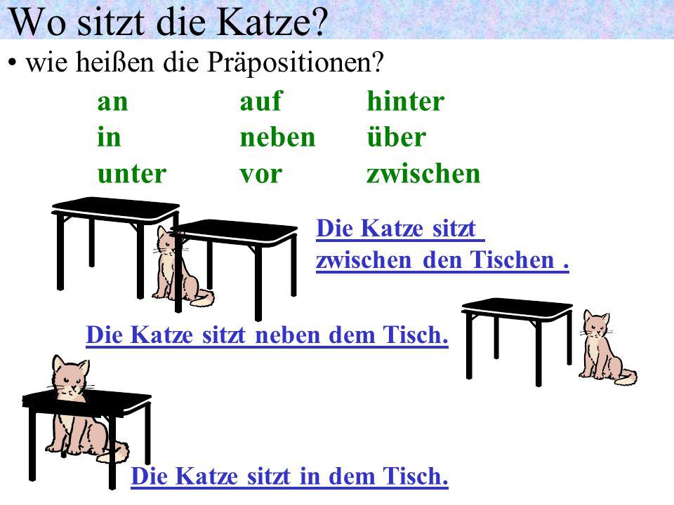 Wo sitzt die Katze? wie heißen die Präpositionen? Die Katze sitzt hinter dem Tisch. Die Katze sitzt über dem Tisch. Die Katze sitzt unter dem Tisch. a
