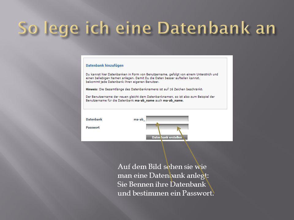 Auf dem Bild sehen sie wie man eine Datenbank anlegt: Sie Bennen ihre Datenbank und bestimmen ein Passwort.