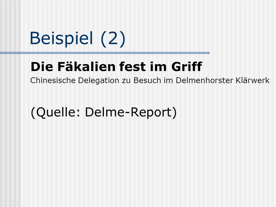 Beispiel (2) Die Fäkalien fest im Griff Chinesische Delegation zu Besuch im Delmenhorster Klärwerk (Quelle: Delme-Report)