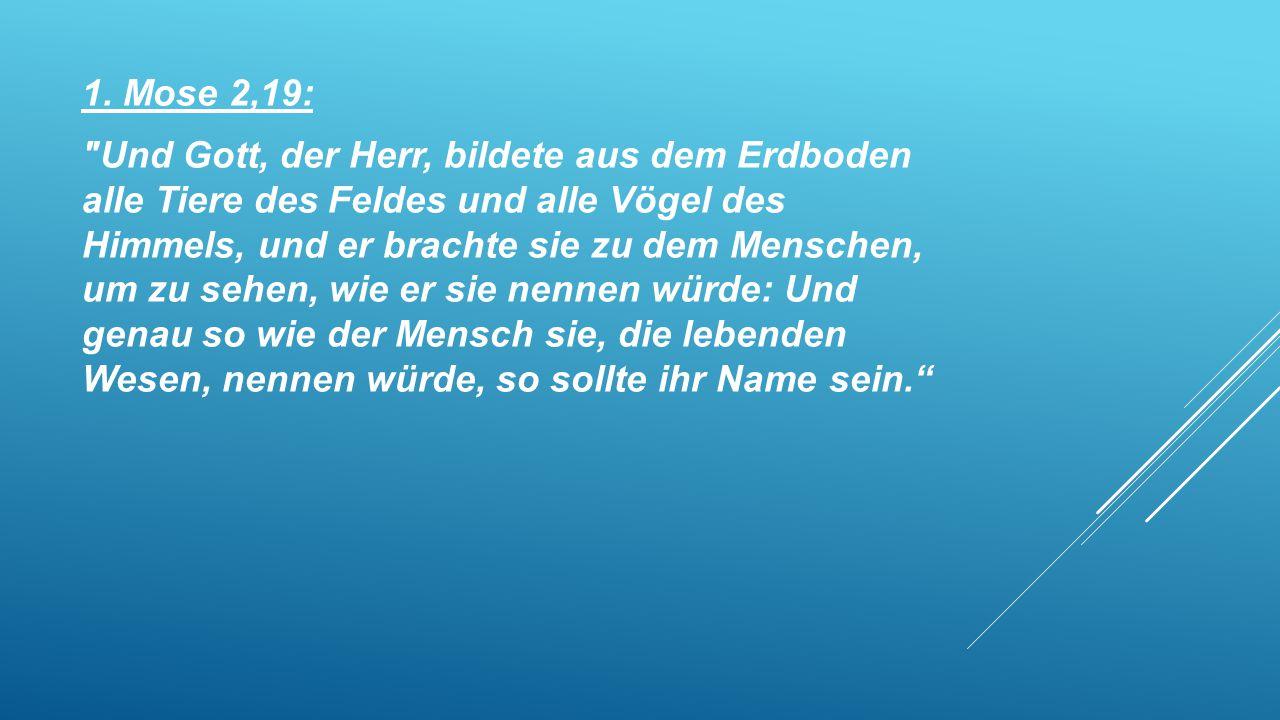 1. Mose 2,19: