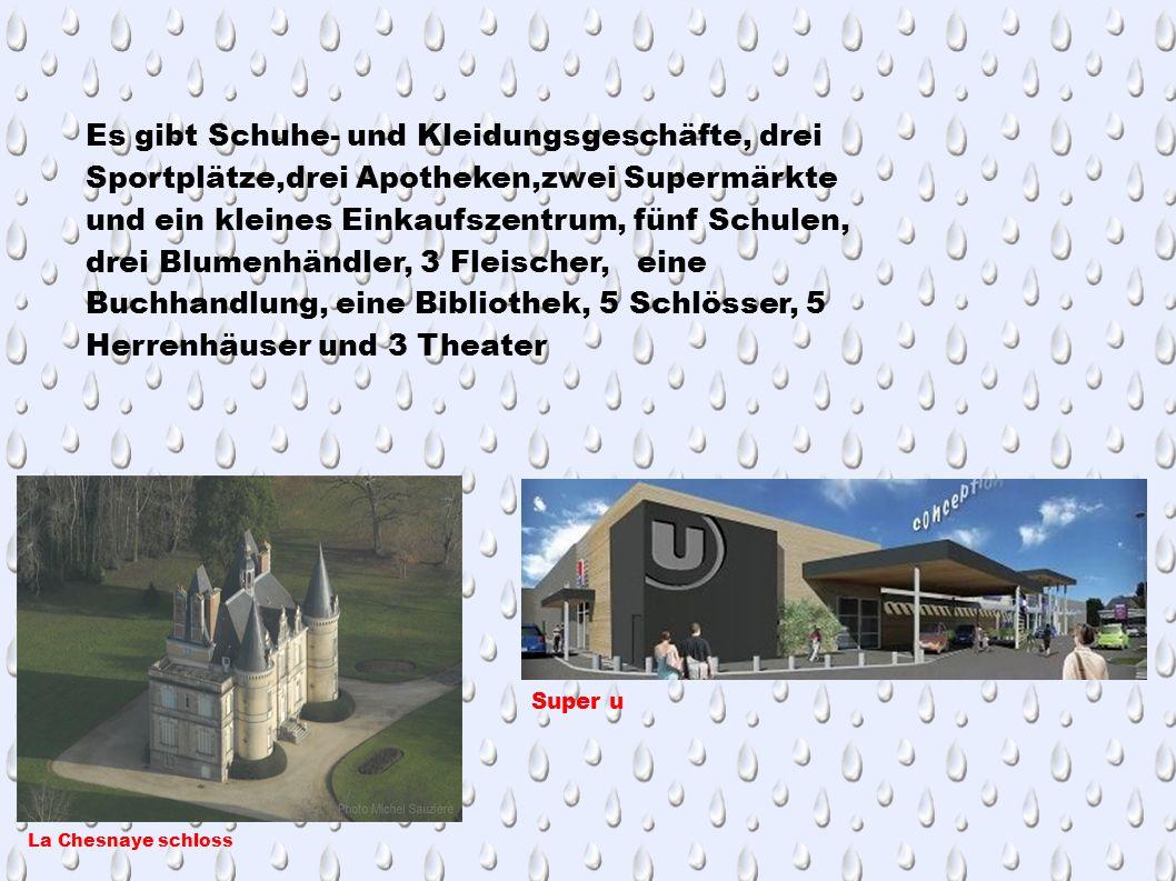 Es gibt Schuhe- und Kleidungsgeschäfte, drei Sportplätze,drei Apotheken,zwei Supermärkte und ein kleines Einkaufszentrum, fünf Schulen, drei Blumenhändler, 3 Fleischer, eine Buchhandlung, eine Bibliothek, 5 Schlösser, 5 Herrenhäuser und 3 Theater La Chesnaye schloss Super u