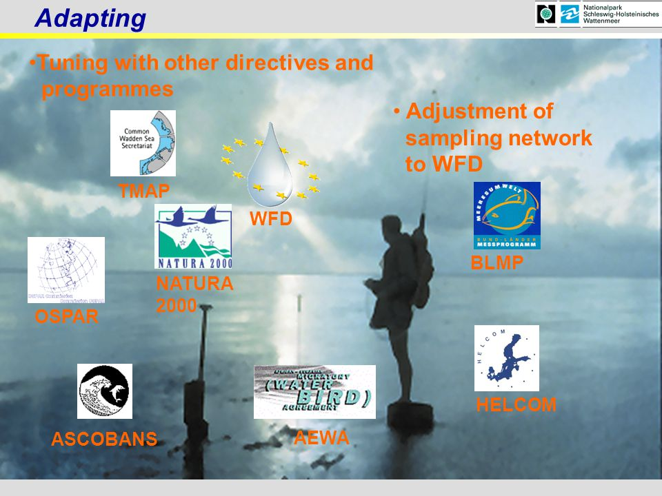 , Adjustment of sampling network to WFD WFD Tuning with other directives and programmes NATURA 2000 ASCOBANS OSPAR BLMP TMAP AEWA Adapting HELCOM