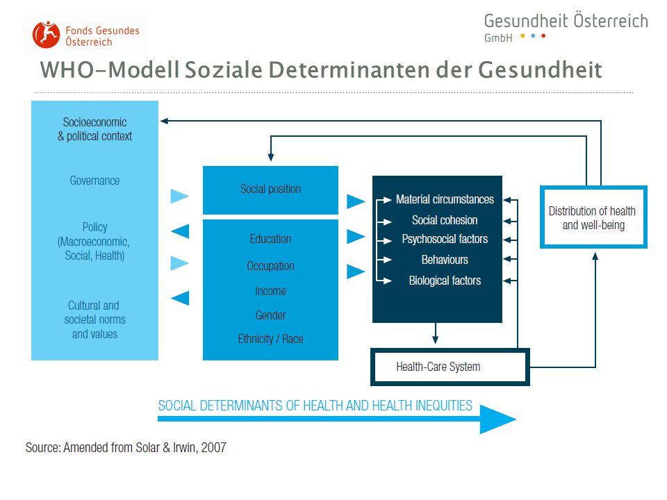 WHO-Modell Soziale Determinanten der Gesundheit Gesundheitssystem