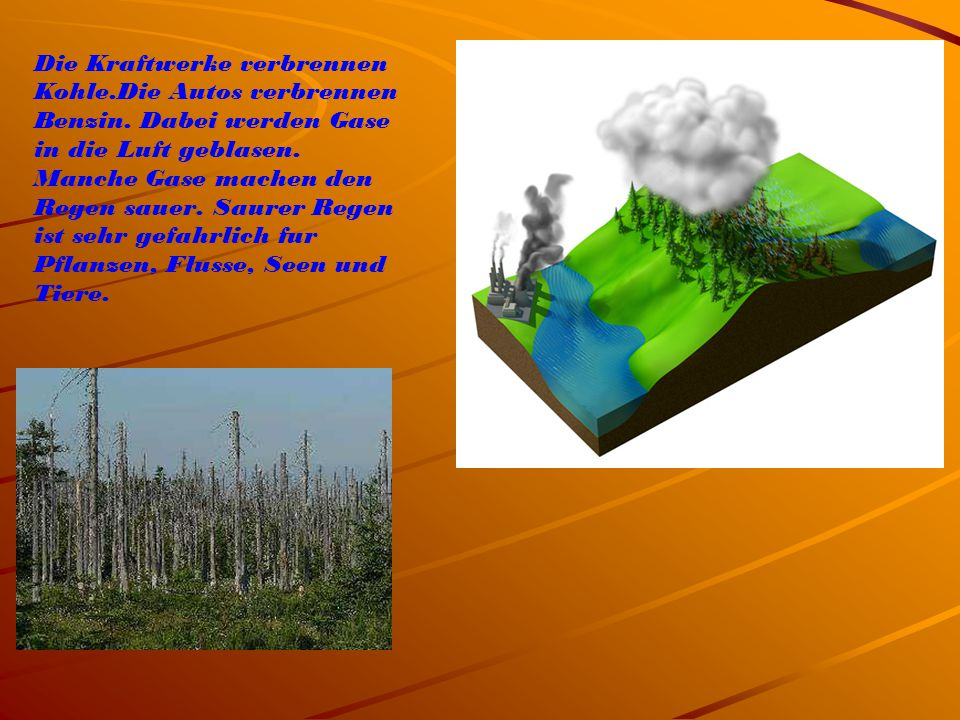 Die Kraftwerke verbrennen Kohle.Die Autos verbrennen Benzin. Dabei werden Gase in die Luft geblasen. Manche Gase machen den Regen sauer. Saurer Regen