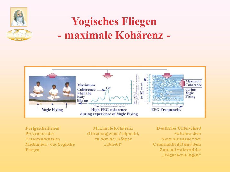 Yogisches Fliegen - maximale Kohärenz - Fortgeschrittenen Programm der Transzendentalen Meditation - das Yogische Fliegen Maximale Kohärenz (Ordnung)