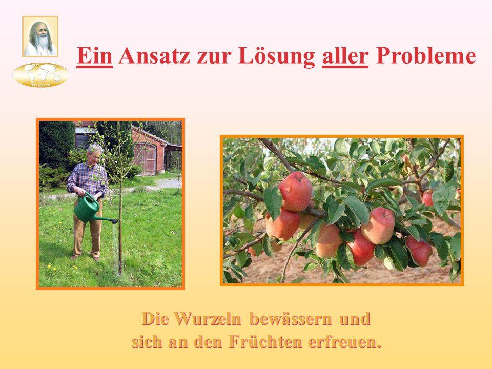 Ein Ansatz zur Lösung aller Probleme Die Wurzeln bewässern und sich an den Früchten erfreuen.